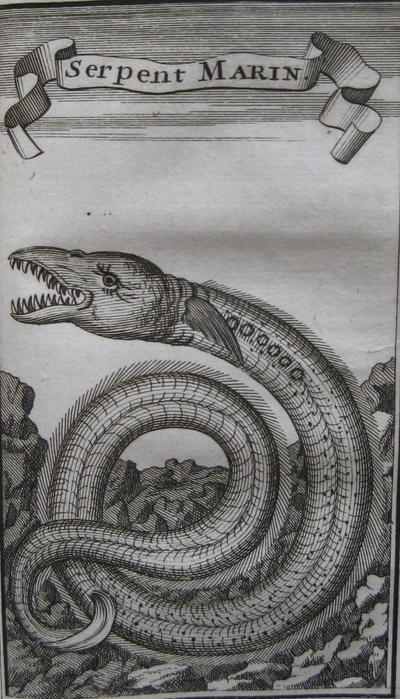 Creatures11